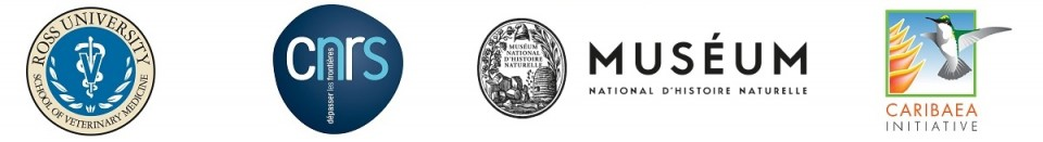 Frise Logos Organizing Committee_RCW2017