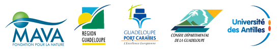 Logos partenaires_RCW2018_Guadeloupe